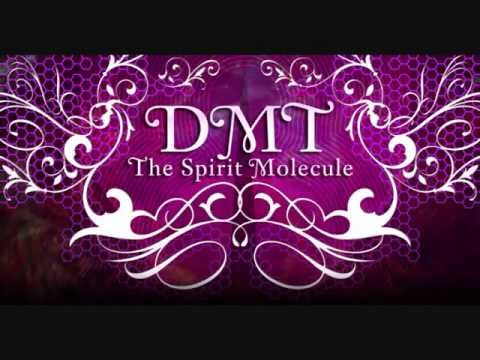 The Spirit Molecule DMT In 5 Minutes 2
