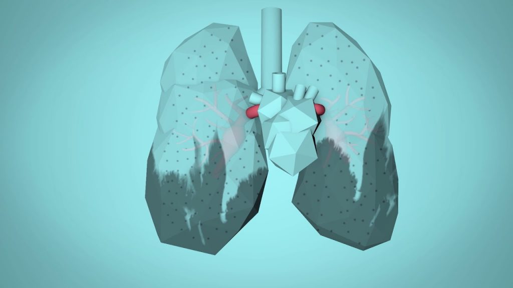 WHO: Breathe Life - How air pollution impacts your body 2