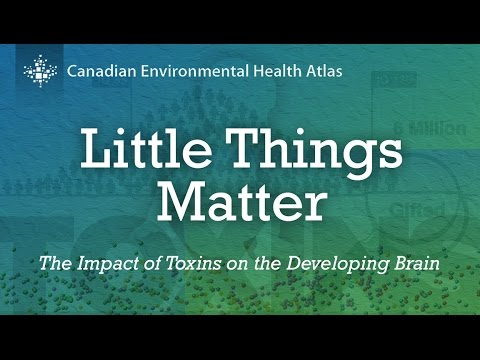 Little Things Matter: The Impact of Toxins on the Developing Brain 1