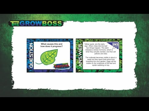WEED GROWER AT AMAZON, WEED EQUIPMENT ON EBAY - BUY CANNABIS GROWING EQUIPMENT ONLINE - GROW BOSS 1