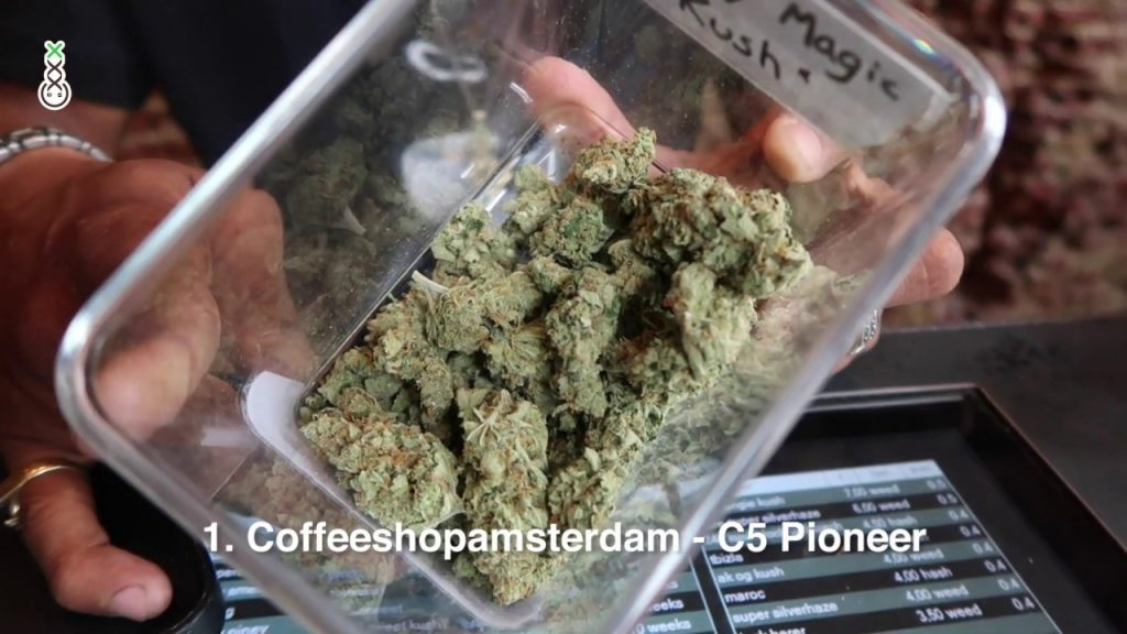 Top 5 Weed (Sativa) Strains in Amsterdam Coffeeshop - Best Coffeeshops 2