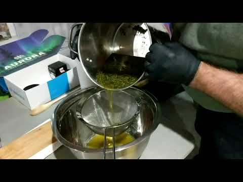 Making cannabis oil for fighting cancer 2