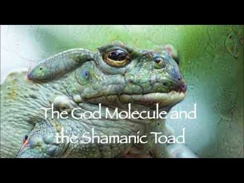 5-MeO-DMT The God Molecule & the Shamanic Toad Crowd funding promo 2