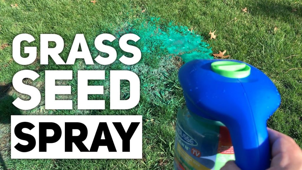 Spray Grass Seed with Hydro Mousse Liquid Lawn 2