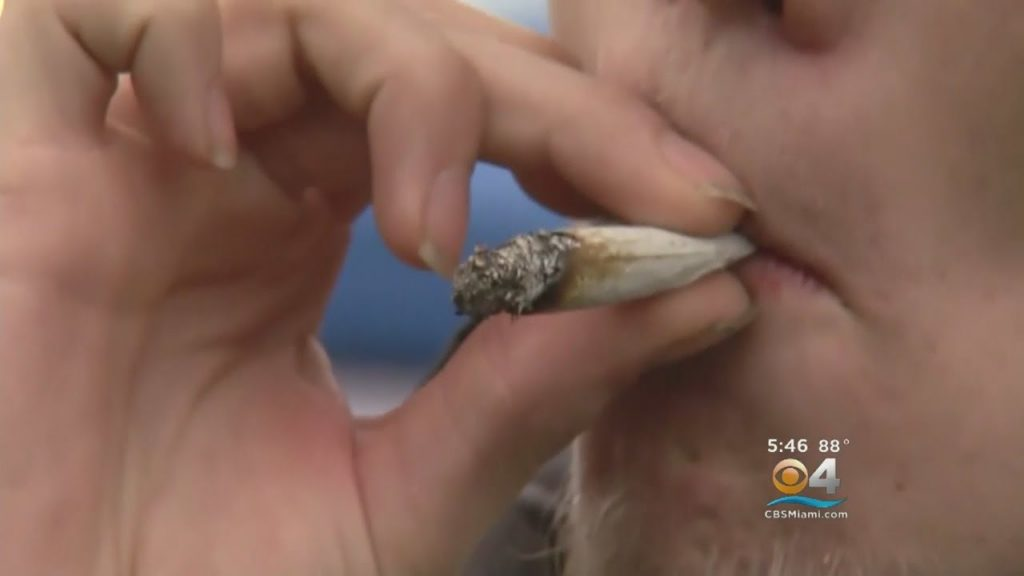 High Rolling Tourists Tempted By Legal Marijuana In Sin City 2
