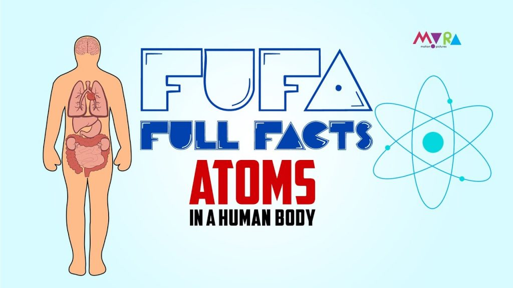 How does your body change every year? | English | FUFA 2