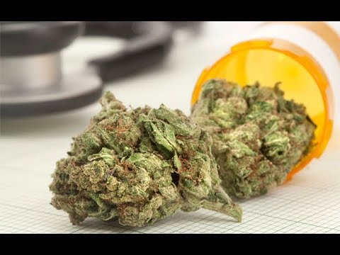 Cannabis News - Adult-Use Sales Coming to Maine Soon? | Ep. 524 | 11-07-2019 2