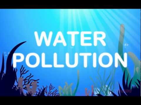Animated Lesson to learn about Water Pollution at www.turtlediary.com 2