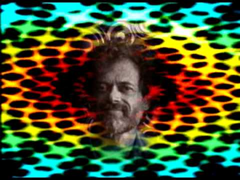 Terence McKenna- The strangest things happen on DMT 2