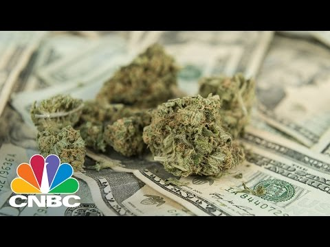 Warren Buffet Of Weed On Why You Should Invest In Cannabis | CNBC 2
