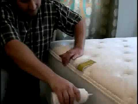 How to Get Rid of Bed Bugs (so they don't come back!) 2