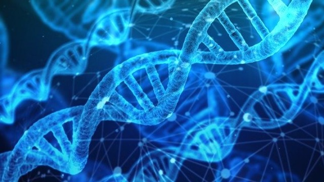 Is DNA One In A Million? - Technology Networks 2