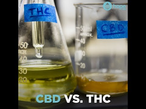 CBD vs THC - Know the difference! 2