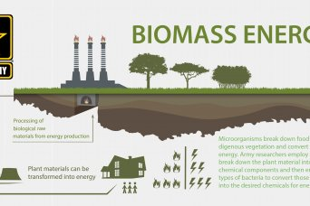 Army scientist focuses on biomass-to-energy research | Article 2