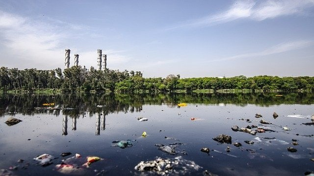 Urgent Improvements To Reduce Pharmaceutical Pollution Needed 2